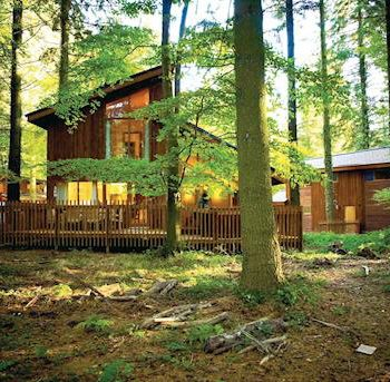 forest of dean cabins, forest of dean lodge, forest of dean cottages